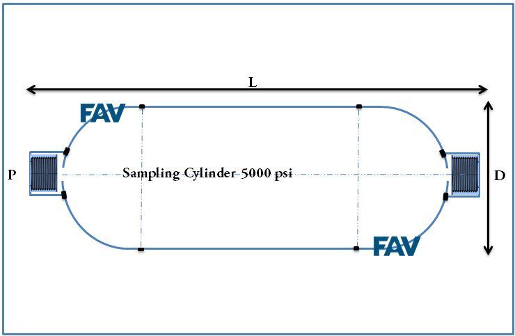 Sampling Cylinder 5000 psi