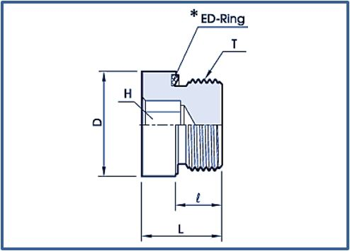 Blanking plugs with Ed Ring