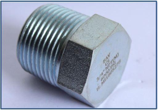 Steel A105 Hex Plug