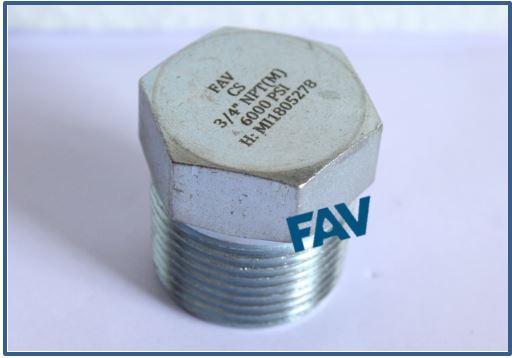 Steel A105 Plug