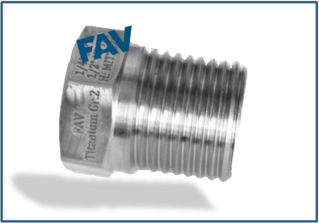 Titanium Gr 2 Plug